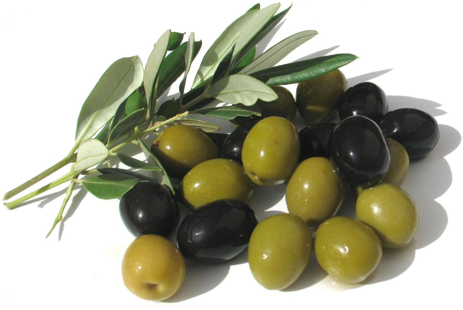 Olive oil, more to it than you think!